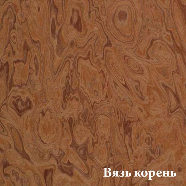 vyaz__koren