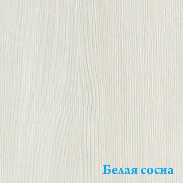Belaya__sosna